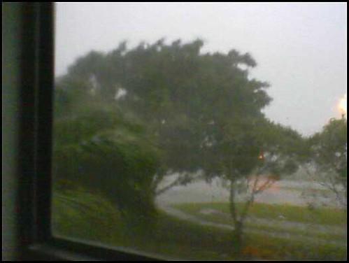 cameraphone wilma hurricane fl hurricanewilma ftmyers leecounty