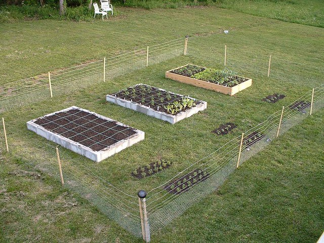 Sqft Square Foot Garden Beds Flickr Photo Sharing