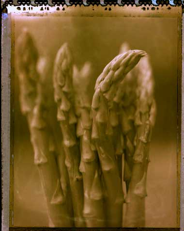 Asparagus - after Manet