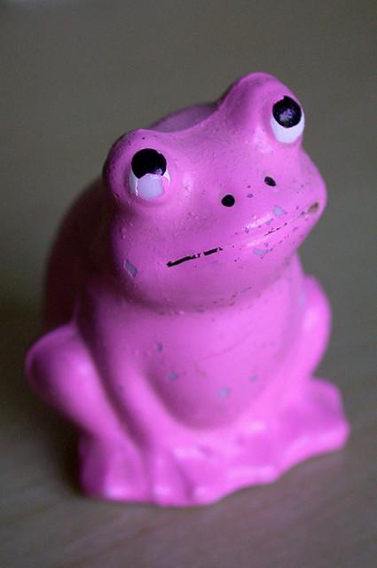 Pink frog - photo#43