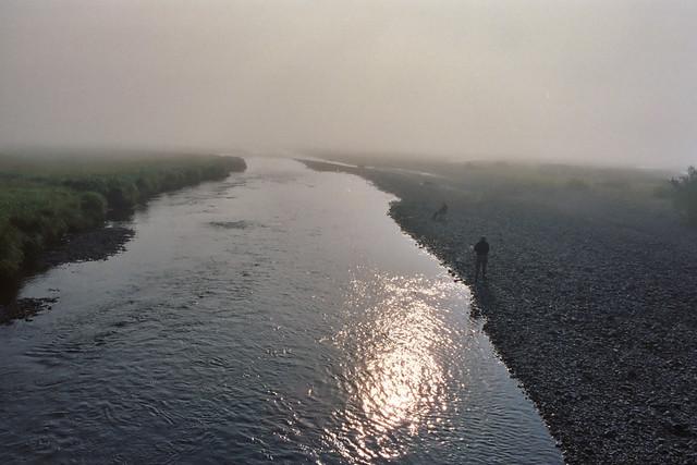 River Island Spotty To