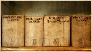 Obraz Herzogin Anna Amalia Bibliothek. germany deutschland weimar thüringen nikon d90