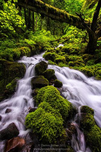 , Crafty Creek, My Travels Blog 2020, My Travels Blog 2020