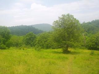 Southwest Virginia