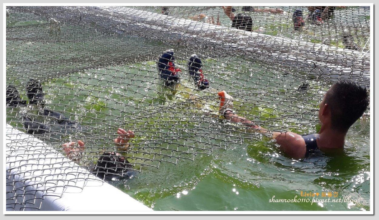 2015板橋征服挑戰賽03