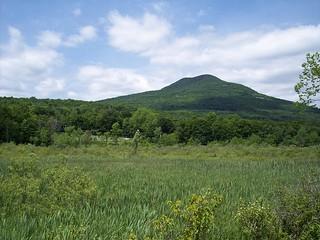 Vermont