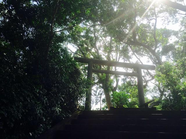 陽光下的玉里社鳥居