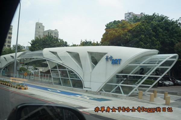 台中秋紅谷27