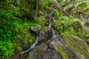 Roaring Fork (GSMNP) -30 by Mosaic Pictures