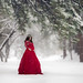 Lady in Red by ljholloway photography