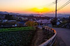 背後から昇る太陽