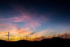 Wind army.jpg