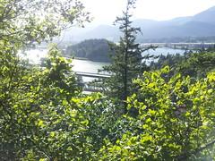 Wauna Viewpoint Hike