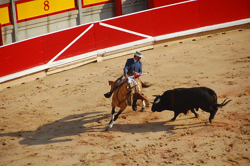 Bull fight in Pamplona