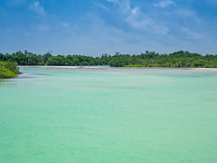 Crystal clear waters of the Gulf of Mexico near Holbox island