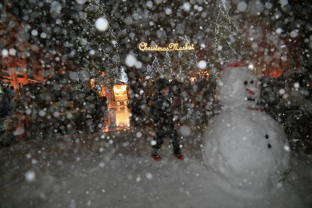 Christmas Market in Yokohama.
