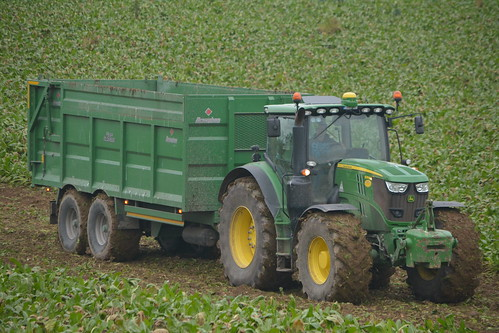 john deere 6215r tractor broughan engineering mega hispeed trailer sugarbeet fodderbeet fodder sugar winter feed county cork ireland irish farm farmer farming agri agriculture contractor field ground soil earth cows cattle work working horse power horsepower hp pull pulling cut cutting crop lifting machine machinery nikon d7100 crops collecting collect tillage traktor tracteur traktori trekker trator ciągnik