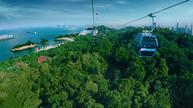 Cable-Car-Sky-Network---Sentosa-Line-greenery