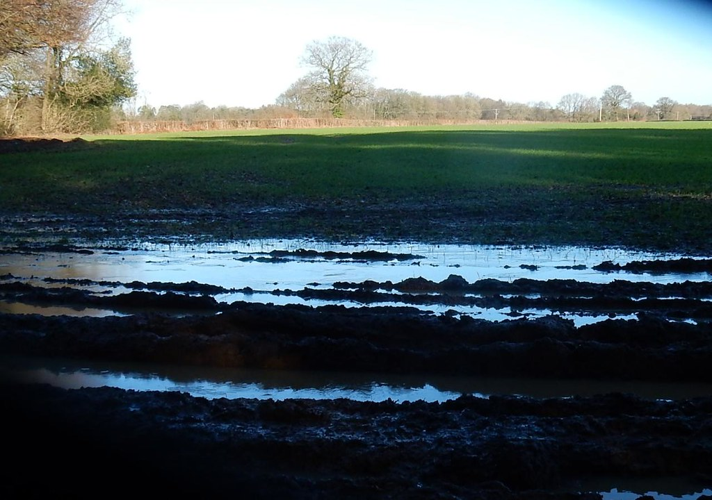 Water in field Great Missenden to Amersham