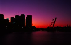 Tampa Skyline Bridge and University