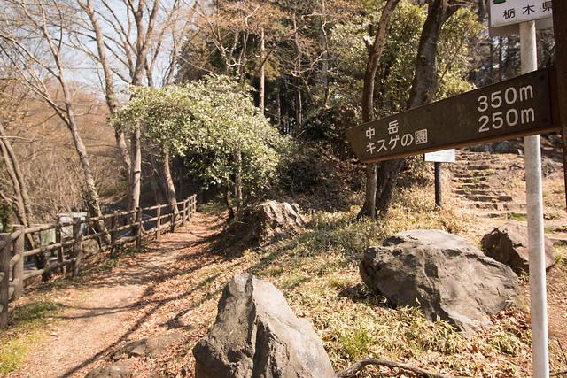 20160326-三毳山-0136.jpg