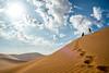namib desert big daddy dune by catherina unger