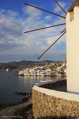 Mykonos, Cyclades, Grèce (3)