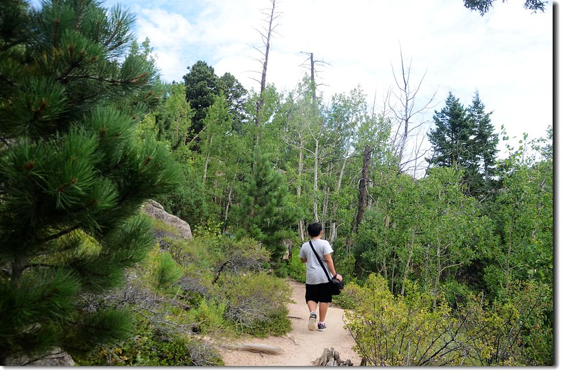 Lumpy Ridge Trail 5