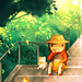by Li Chen25