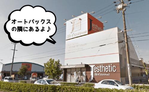 jesthe76-toyohashi01
