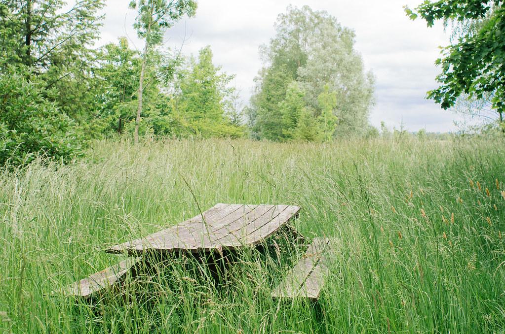 Road trip dans les Ardennes - La grande prairie