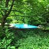 Forlorn Swimmingpool