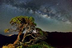 銀河 Milky Way
