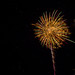 Alachua Fireworks 2