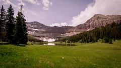Allsop Lake Spring