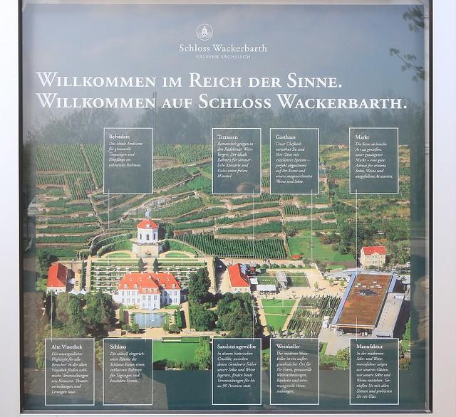 Sächsisches Staatsweingut, Schloss Wackerbarth, Radebeul, Sachsen, Saxony, Germany, fotoeins.com