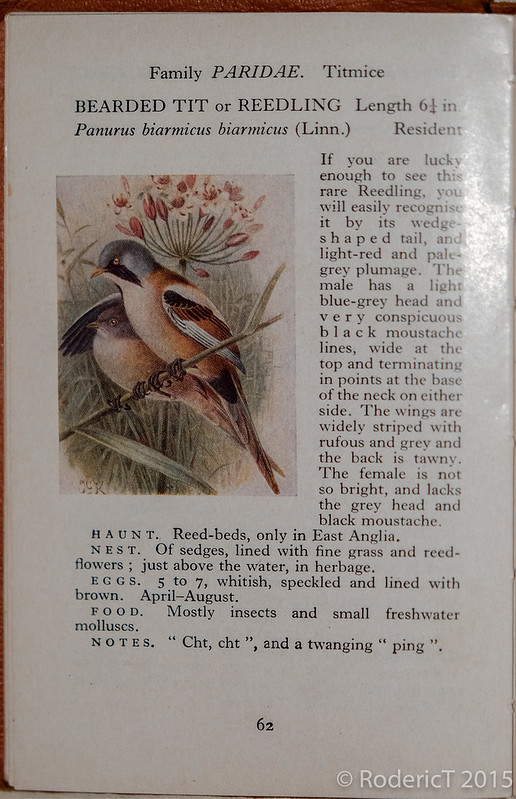 20150715-DSCF8675-Edit Bearded Tit Page from Observer Book Of Birds.jpg