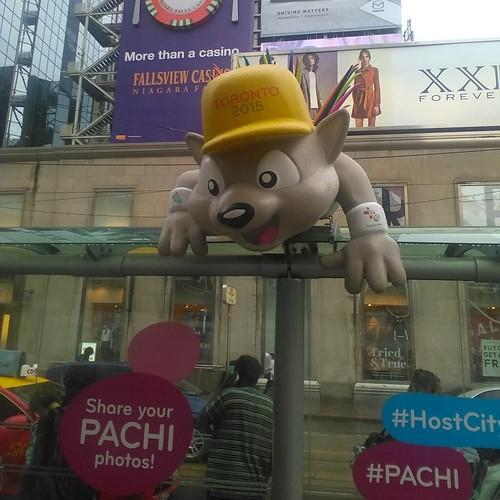 Pachi in the rain #toronto #yongeanddundas #pachi #panamgames