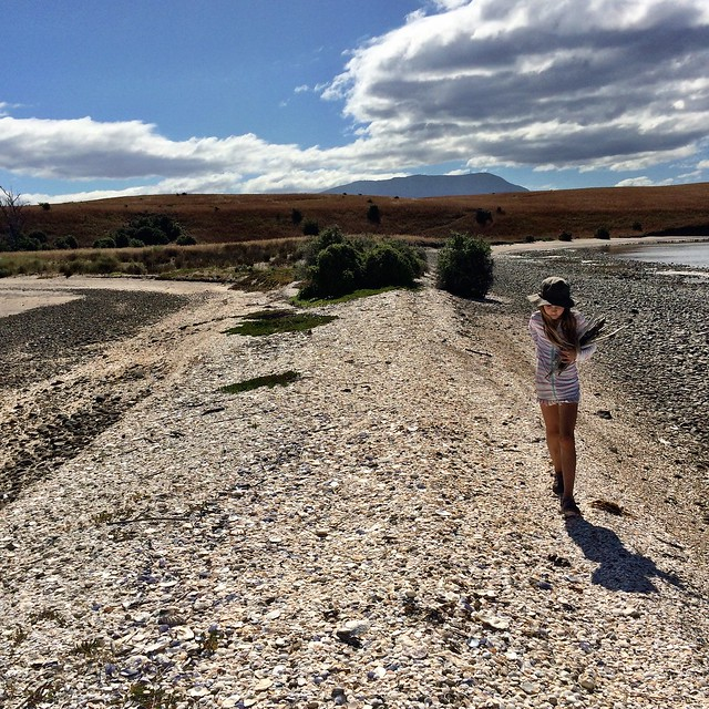 The Spit. Z carrying her driftwood finds, hoping for some Huon Pine