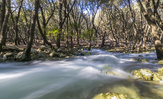 Fonts Ufanes 的形象. sesfontsufanes campanet mallorca agua torrente water river