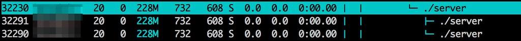 htop을 통해 확인한 서버 쓰레드