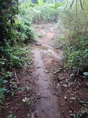 obodanwaterpoint2