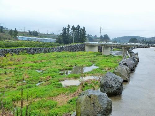 Co-Jejudo-Seogwipo-Sentier Olle 9 (10)