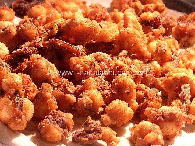 Poulpe Frit-Pulpito Frito © Ana Luthi Tous droits réservés 007