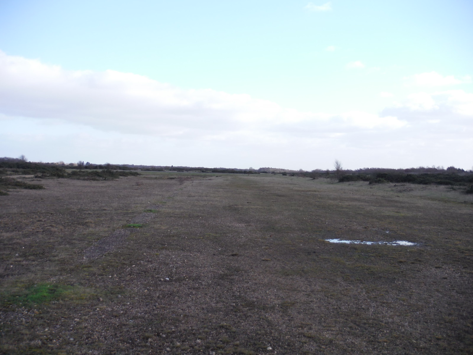 Greenham Common: Ex-Runway SWC Walk 34 Newbury Racecourse to Woolhampton (Midgham Station)