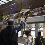 12/13/16 LAS Field Trip Natural History Museum