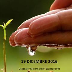 Fitosanitari. Dalle azioni della DGR 1682/2014 alle attività del Piano Regionale di Prevenzione