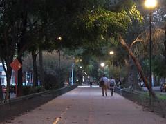 Avenida Mazatlan