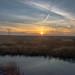 Abbotts Meadow Sunset