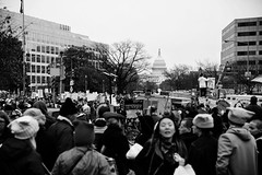 21/365 - This is what democracy looks like! (This is what democracy looks like!)